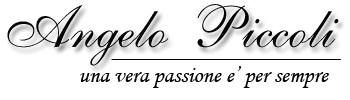 Angelo Piccoli - Fabbrica Organetti Artigianali